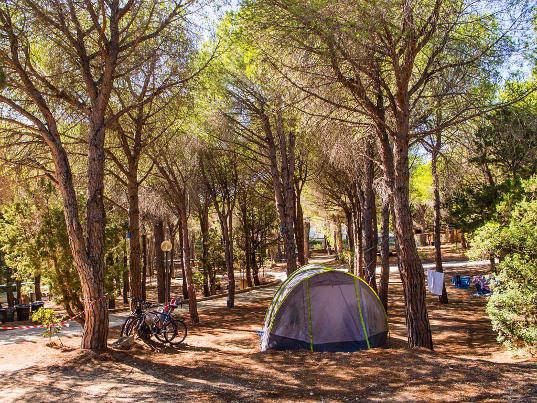Camping Cala Gonone di Dorgali (NU)