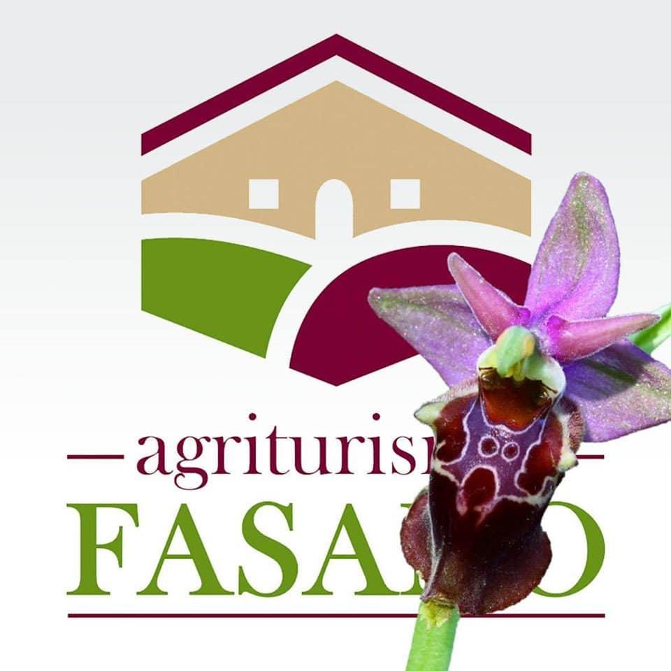 Agricampeggio Fasano di Cassano delle Murge (BA)