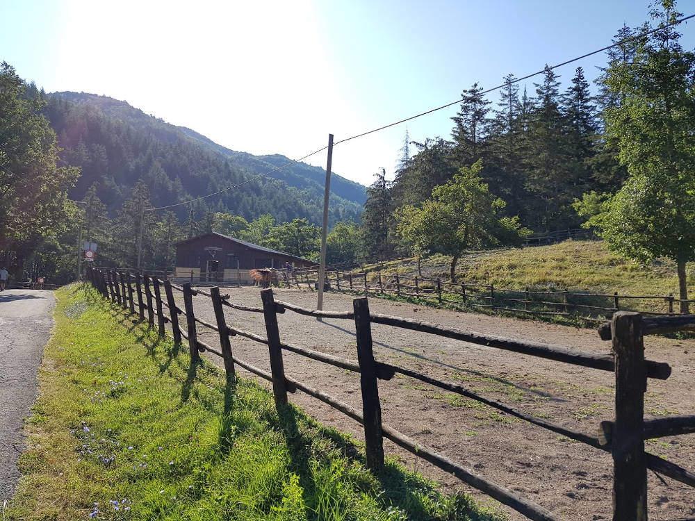 Area Camping Moscheta di Firenzuola (FI) - centro equestre