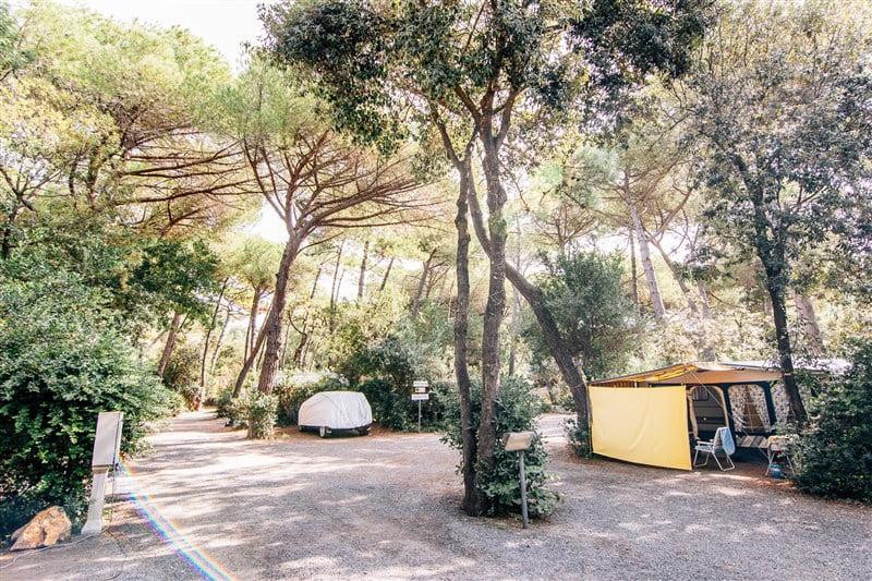 camping casa di caccia di bibbona giro per campeggi