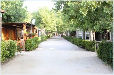 Camping Dream di Terracina (LT)