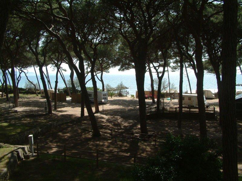 Camping pineta del golfo di follonica giro per campeggi - Bagno pineta follonica ...