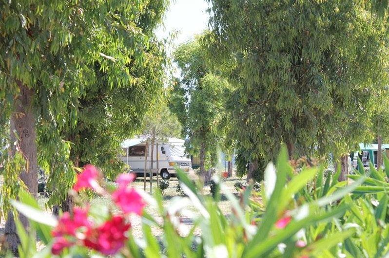 Camping Village Laguna Blu di Alghero (SS)